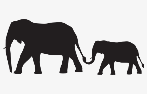Free Baby Elephant Clip Art with No Background.