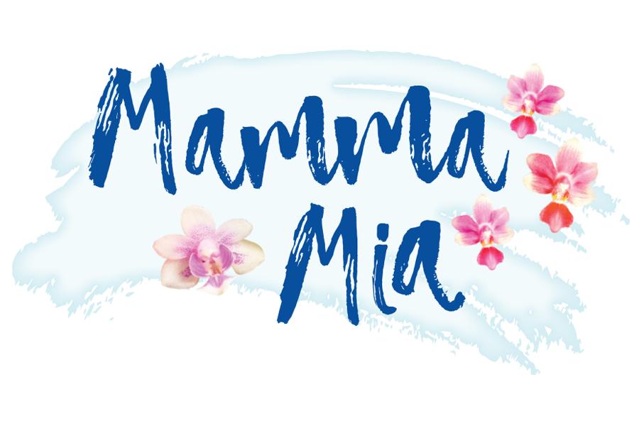 Mamma Mia! — Stowe Theatre Guild.