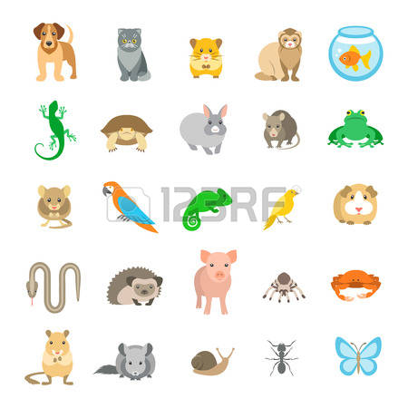 3,037 Hamster Stock Vector Illustration And Royalty Free Hamster.
