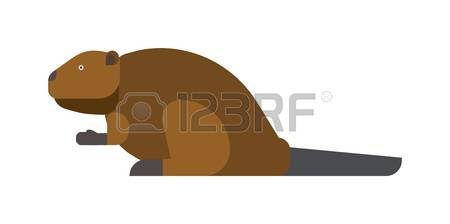 223,370 Mammal Nature Stock Vector Illustration And Royalty Free.