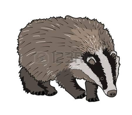 223,370 Mammal Nature Stock Vector Illustration And Royalty Free.