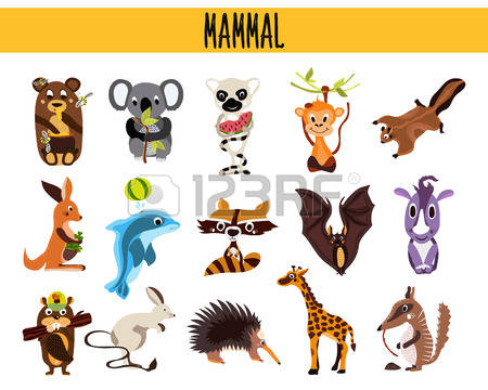 831,856 Mammals Stock Vector Illustration And Royalty Free Mammals.