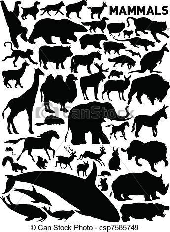 Mammals Clip Art and Stock Illustrations. 135,710 Mammals EPS.