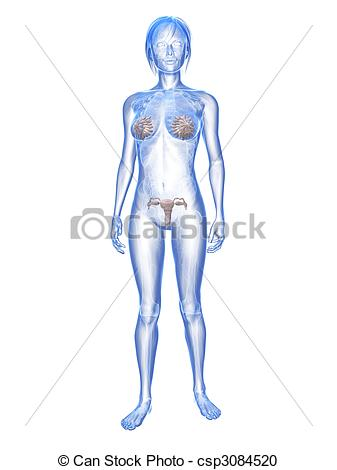 Stock Illustration of woman.