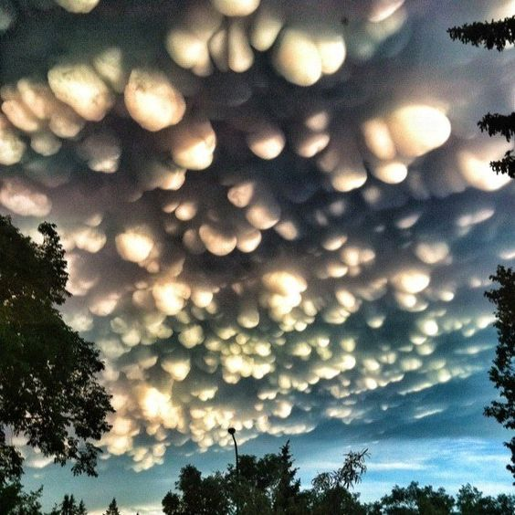 A rare cloud formation called a mammatus, where clouds take on a.