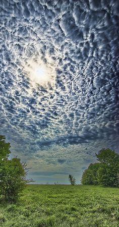 Mammatus clouds clipart.