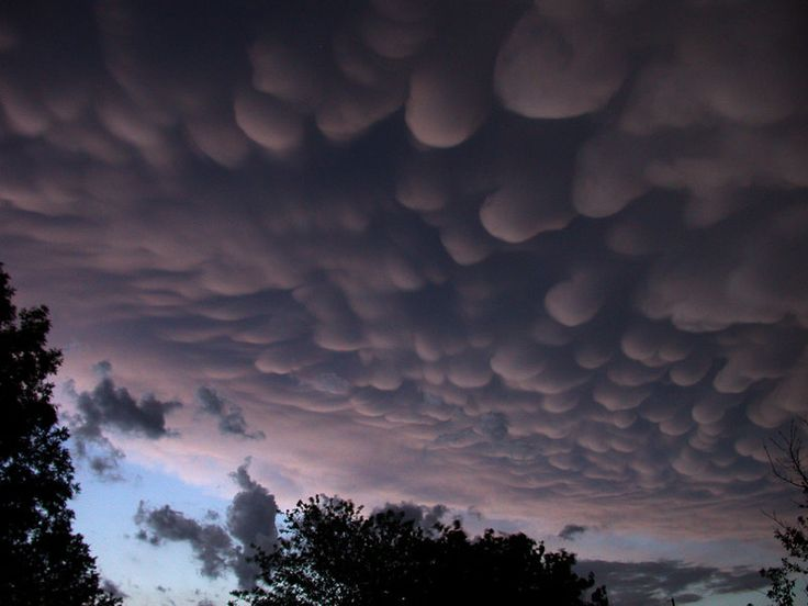 1000+ images about Mammatus clouds on Pinterest.