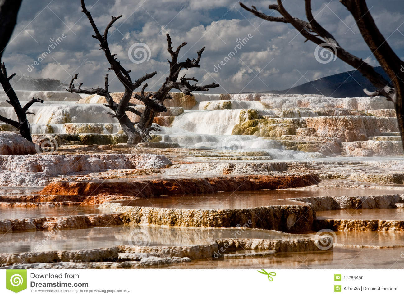 Mammoth Hot Springs At Yellowstone National Park 2 Stock Photo.