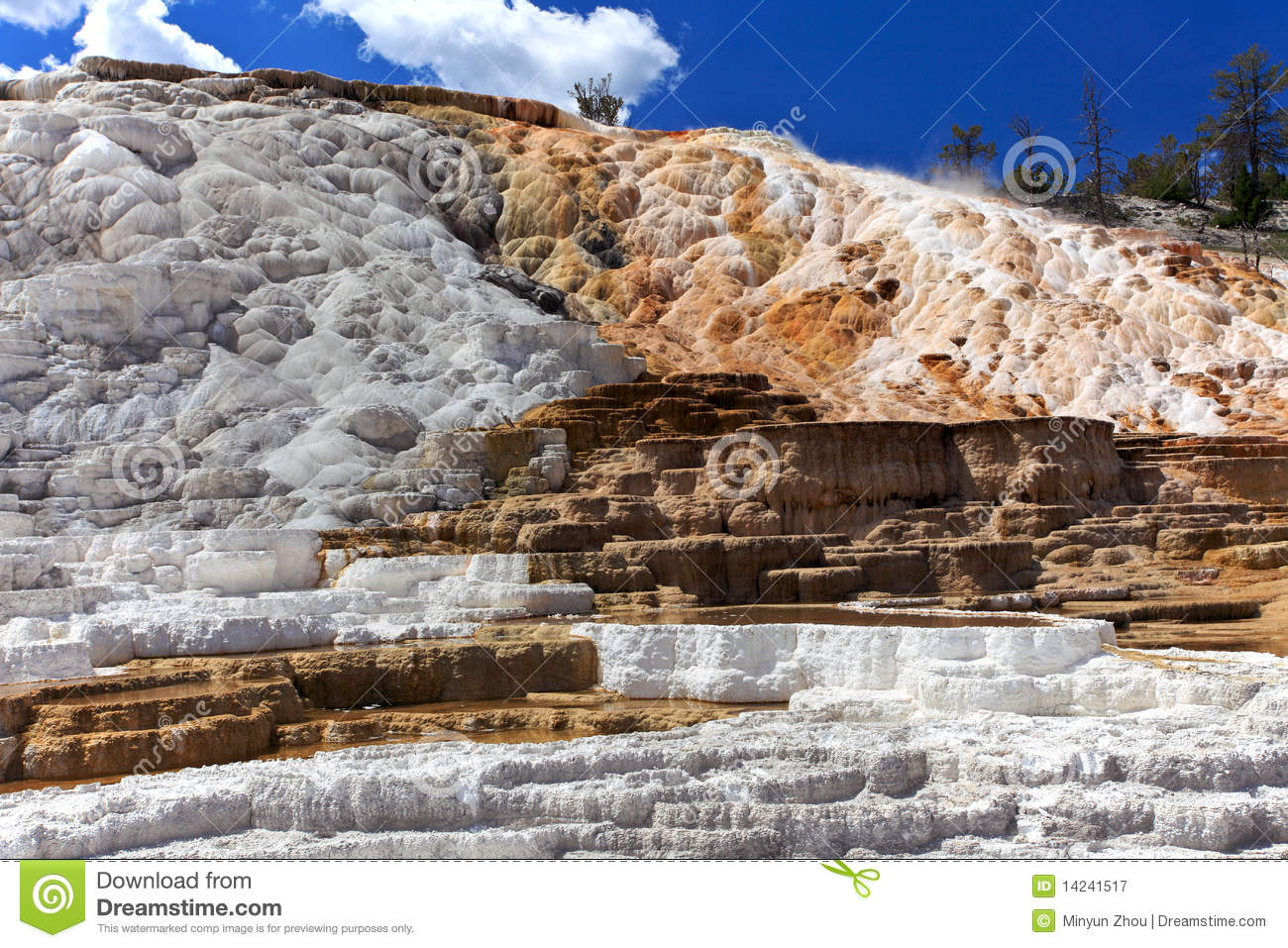 Mammoth Hot Springs,Yellowstone National Park Royalty Free Stock.