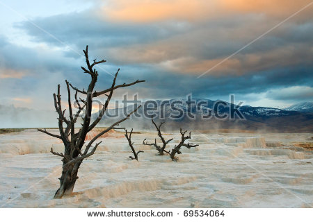 Mammoth Hot Springs Stock Images, Royalty.