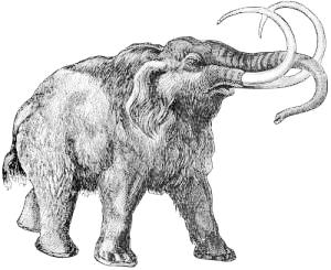 Mammoth Clip Art Download.