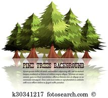 Mammutbaum Clip Art und Illustrationen. 23 mammutbaum Clipart.