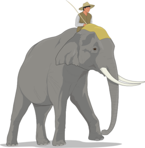 Showing post & media for Cartoon man riding elephant.