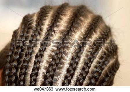 Stock Photo of Plaits, tress of hair , braids.