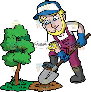 A Man Digging A Hole Next To A Small Tree.