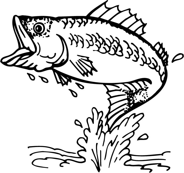Animals Clipart Bass Fishing Clipart Gallery ~ Free Clipart Images.