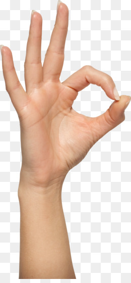 Hands PNG.