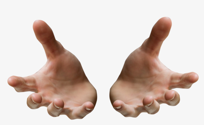 Both Hands, Hand, Hand Man, Hands PNG Transparent Image and.