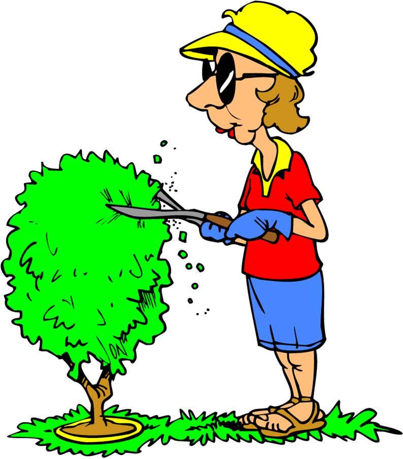 Showing post & media for Cartoon men trimming bushes.