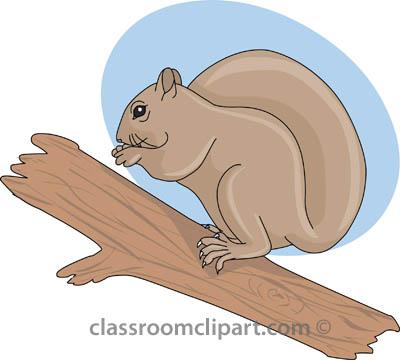 Cartoon squirrel clip art.