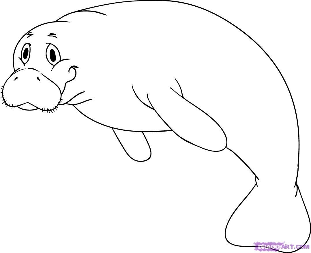 Manatee clipart black and white 5 » Clipart Portal.