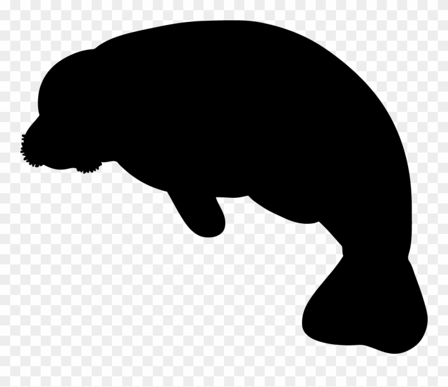Manatee Clipart Black And White 20.