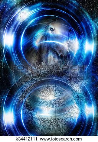 Clipart of Horse in space with ornamental mandala. Mirror on the.