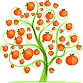 Mandarin Clip Art.