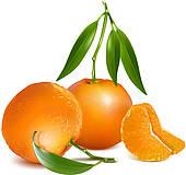 Mandarin Clipart EPS Images. 6,102 mandarin clip art vector.