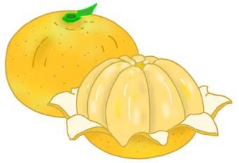 Mandarin clipart.