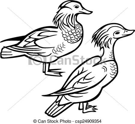Clipart Vector of Pair of Mandarin Ducks.