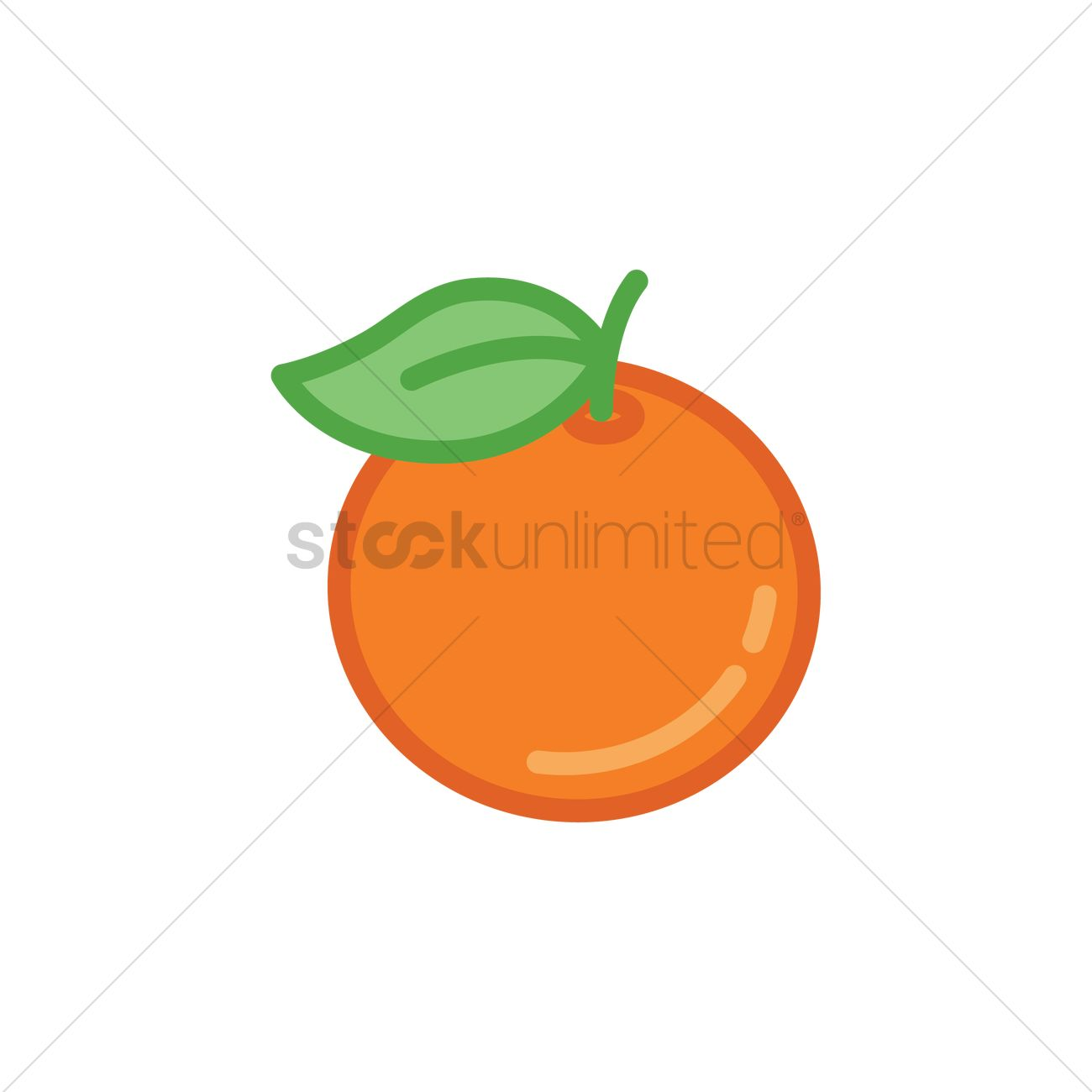 Mandarin orange Vector Image.