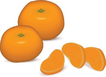Mandarin orange Free Vector / 4Vector.