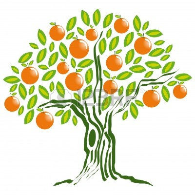 orange tree drawing.