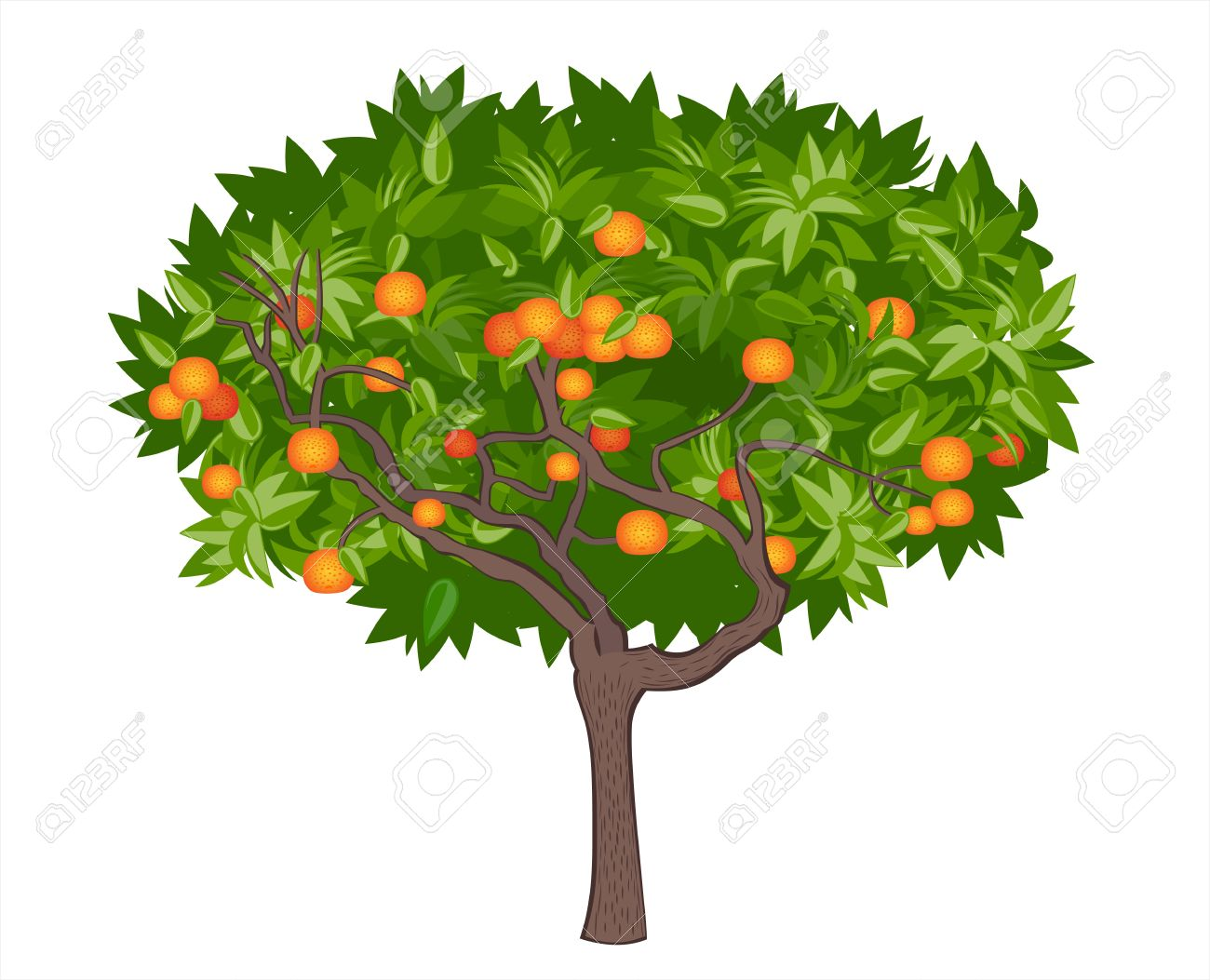 50,120 Orange Tree Cliparts, Stock Vector And Royalty Free Orange.