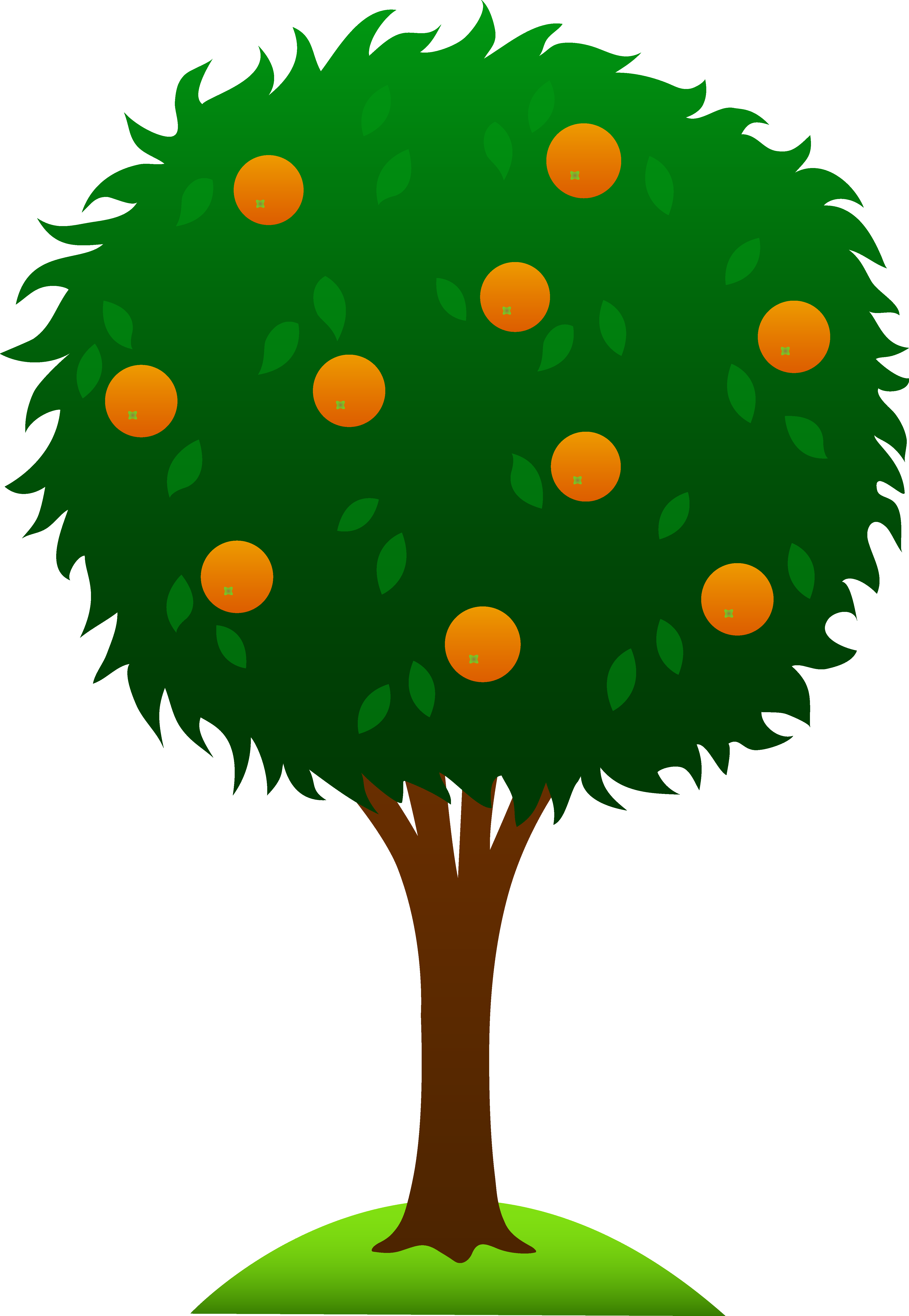 mandarin tree clipart clipground oranges clipart free oranges clipart images