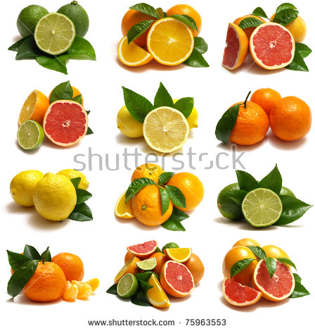 Citrus fruits free stock photos download (2,211 Free stock photos.