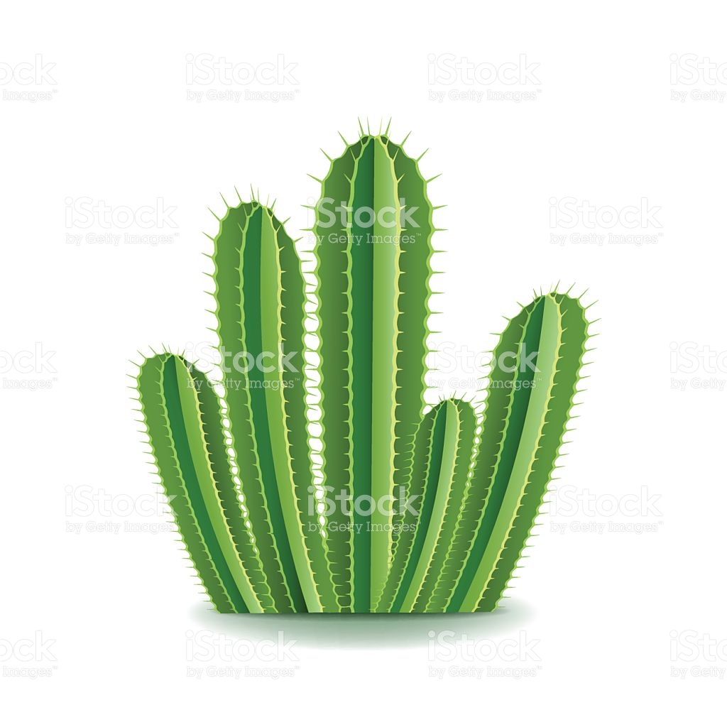 Cactus Thorn Clip Art.