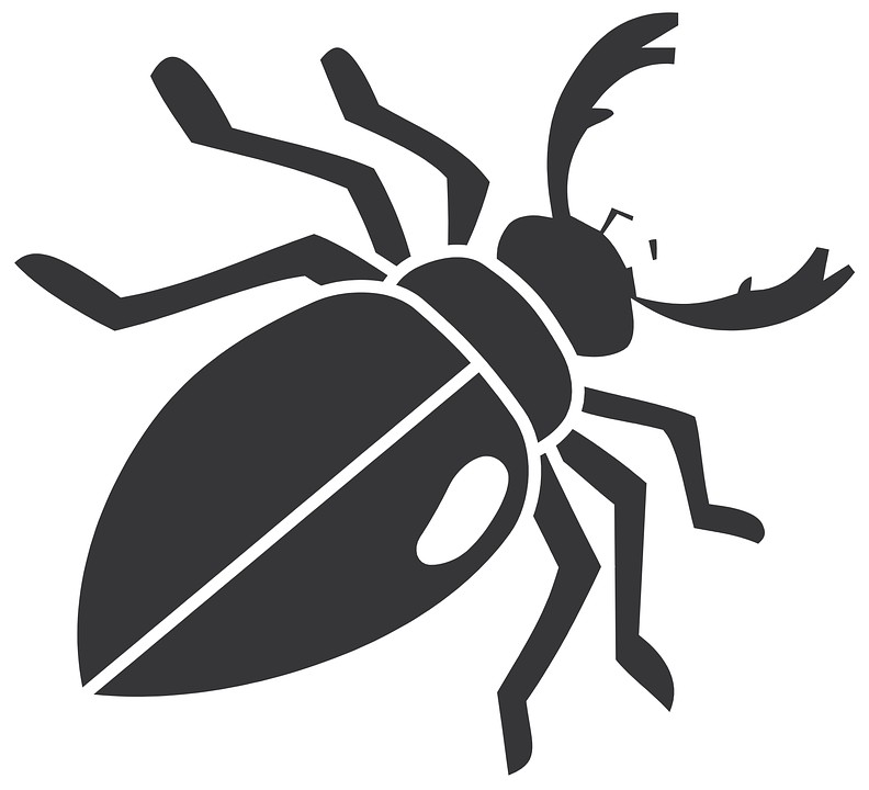 Free vector graphic: Beetle, Insect, Wings, Legs.