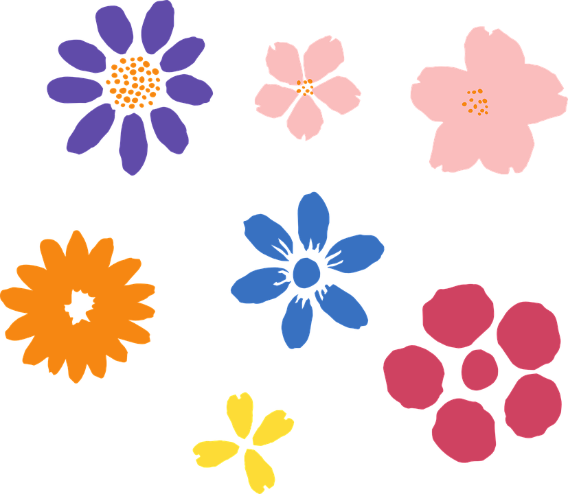 Free vector graphic: Flowers, Cherry, Cherry Blossoms.