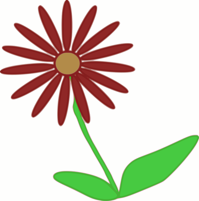 Free vector graphic: Flower, Spring, Plant, Blooming.