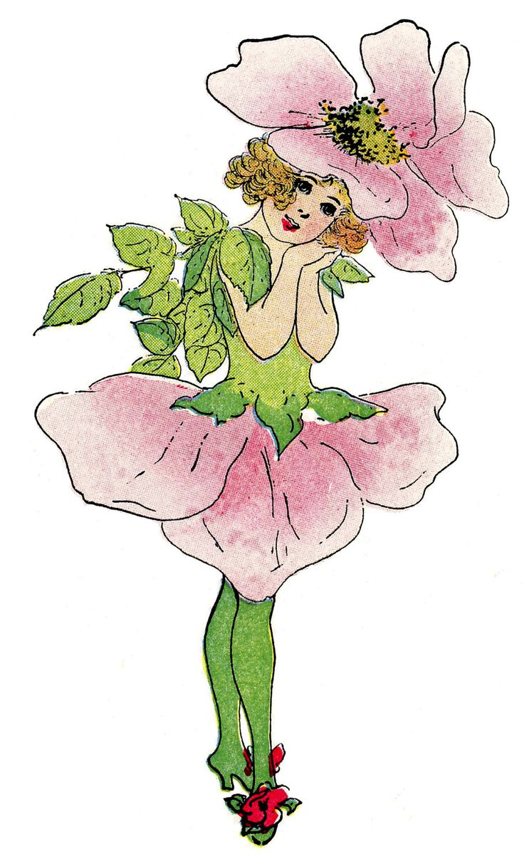 1000+ images about Flower Fairies on Pinterest.