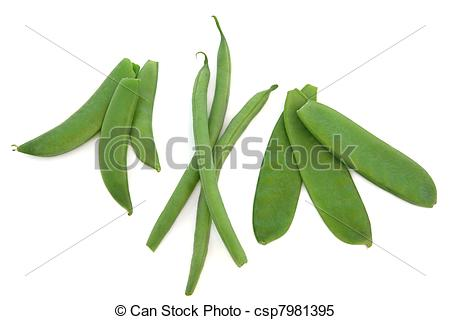 Stock Images of Peas, Beans and Mangetout.