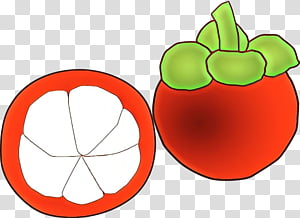 Fruit Tree, Mangosteen, Food, Drawing, Cartoon, Kulit.