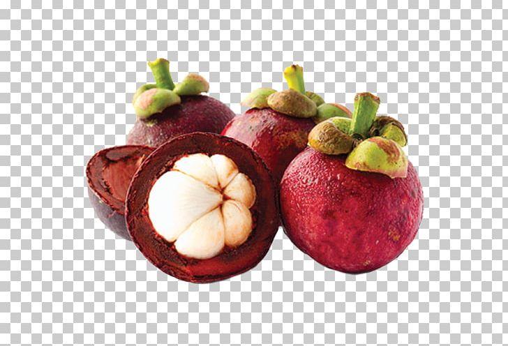 Purple Mangosteen Kulit Manggis Health Nutrient Herb PNG.
