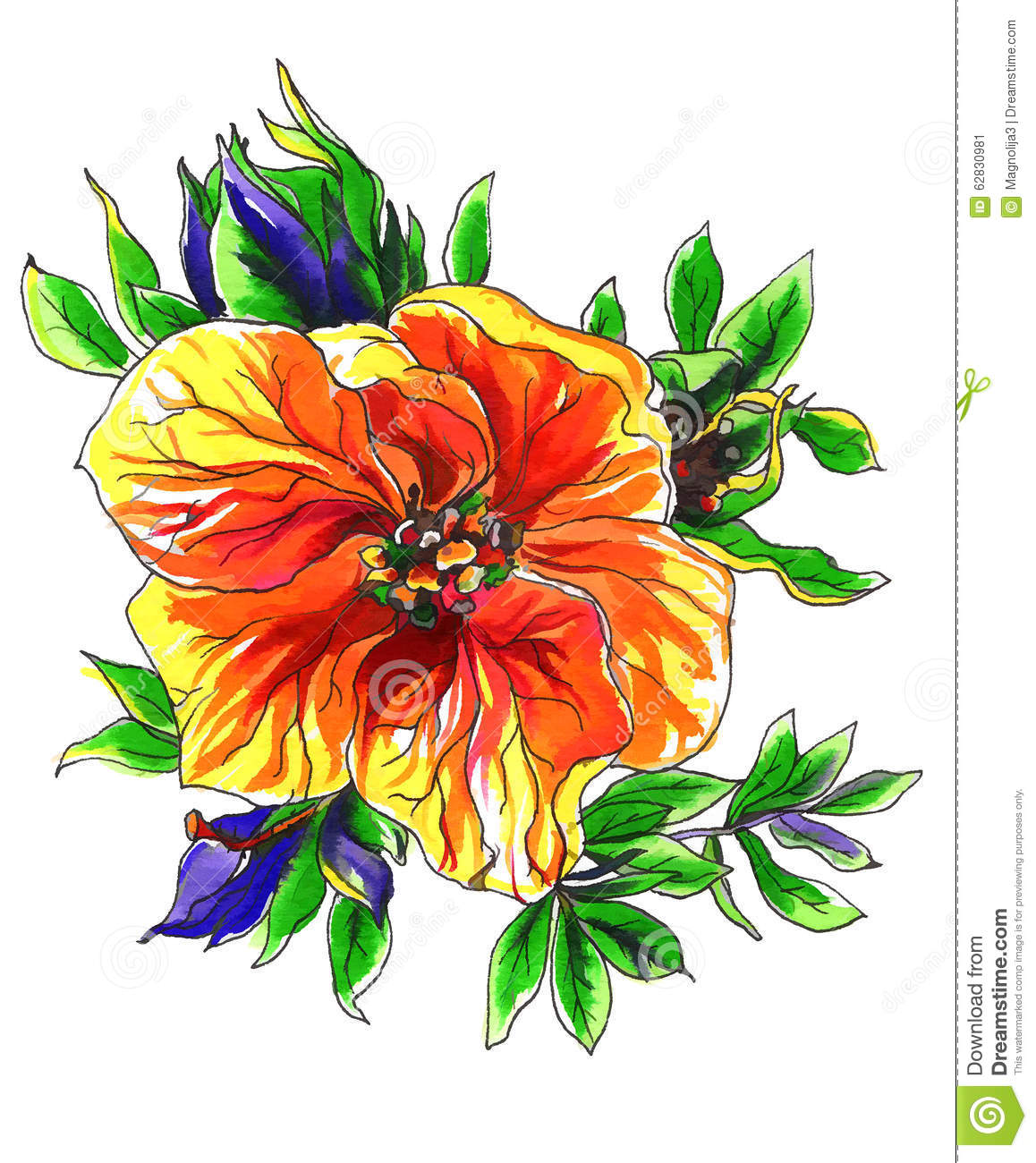 Decorative Tropical Exotic Mango Flower Stock Illustration.