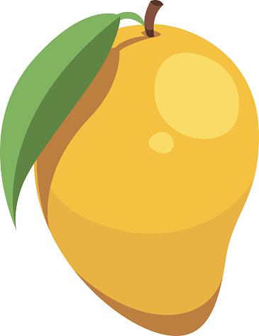Mango clipart vector.