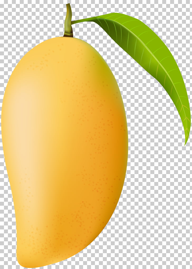 Mango , Mango , yellow mango fruit illustration PNG clipart.