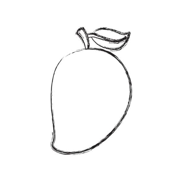 Mango Clipart Black And White.