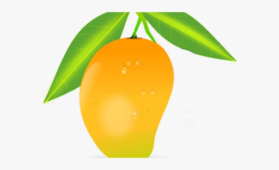 Realistic Clipart Mango.